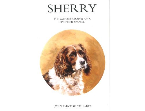 Sherry The Autobiography of a Springer Spaniel – Review