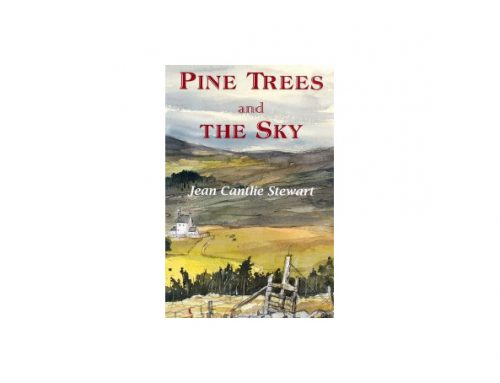 Pine Trees and the Sky – Review